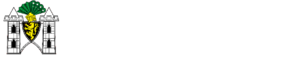 Spitzenstadt.de - Das Online-Magazin im Vogtland