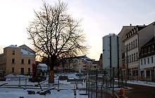 130109 Bäume Neundorfer