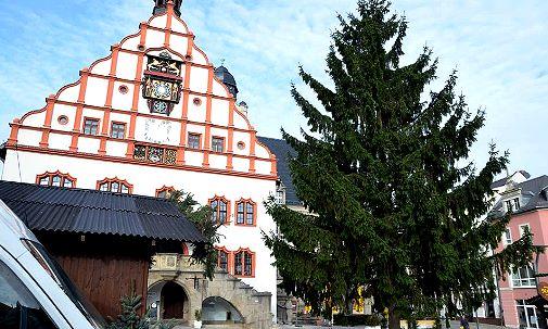 221113 Weihnachtsbaum