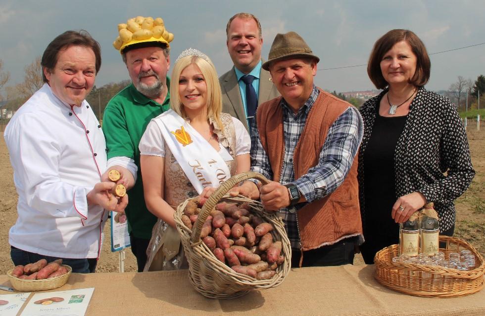 Vogtland: König Albert Hotel bekommt eigene Kartoffel