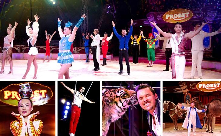 Spitzenstadt.de schickt Sie zum Circus Probst in Plauen