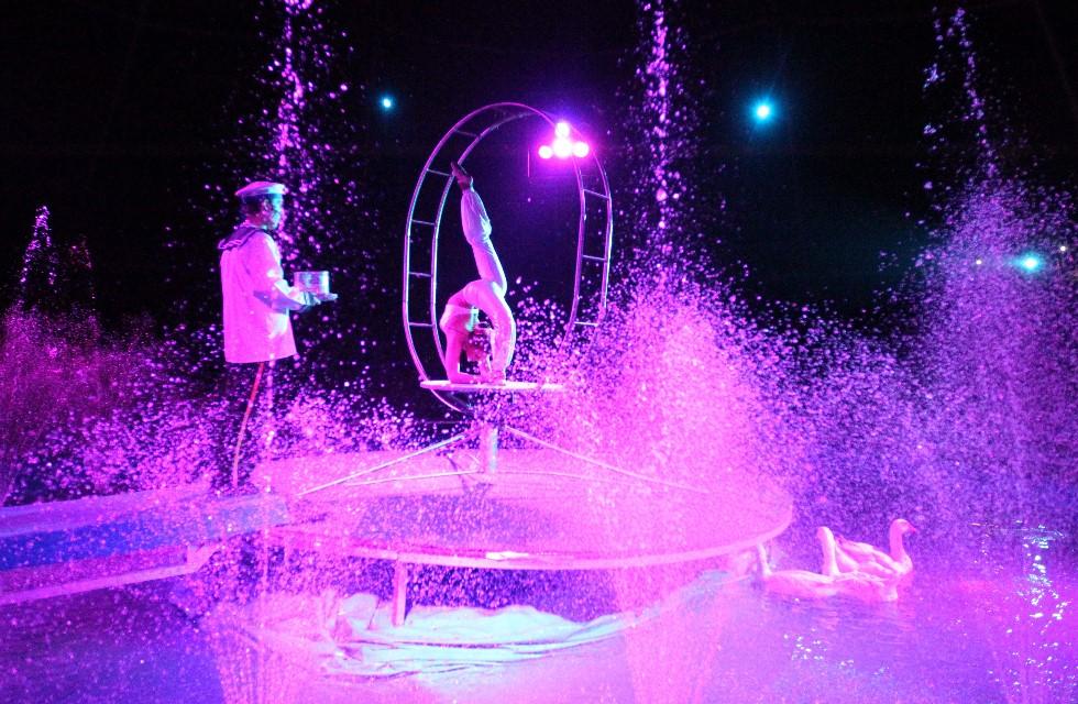 Umstrittene Circus-Show in Plauen zu sehen