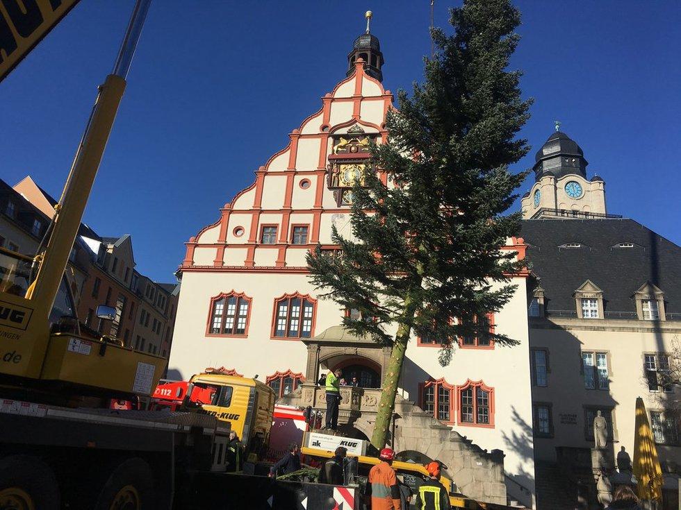 Das ist Plauens Weihnachtsbaum 2018