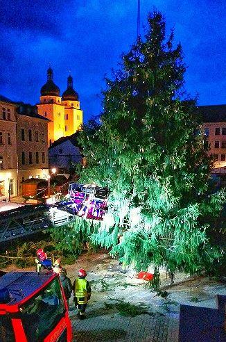 Plauener Weihnachtsbaum droht umzustürzen. Foto: F.Trtschka
