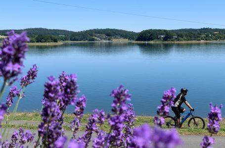 Abkühlung im sommerlichen Vogtland
