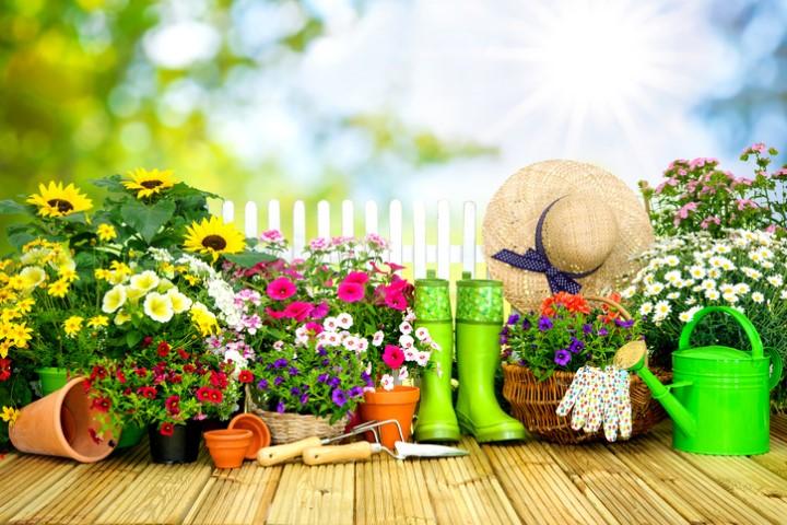 Gartenutensilien