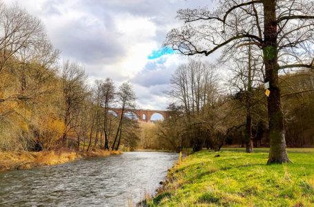 """Weiße Elster zur """"Flusslandschaft des Jahres 2020/21"""" gewählt"""