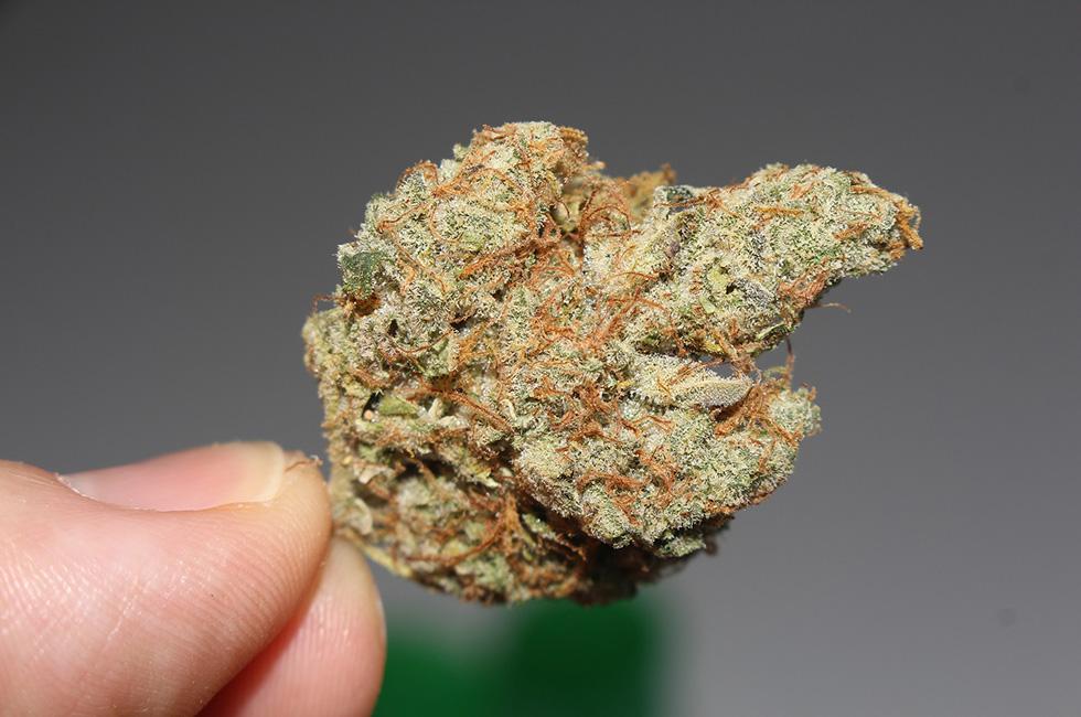 Marihuana-Cannabis-Knolle-Drogen-Rauschmittel