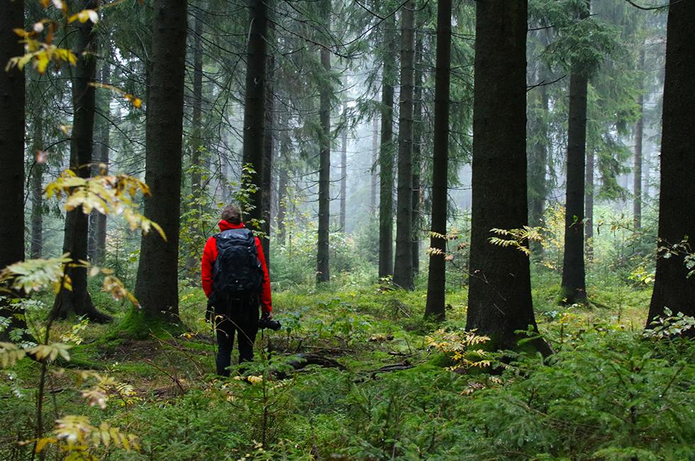 Meiler-Schöneck-Tourismusverband-Vogtland-Fotografie