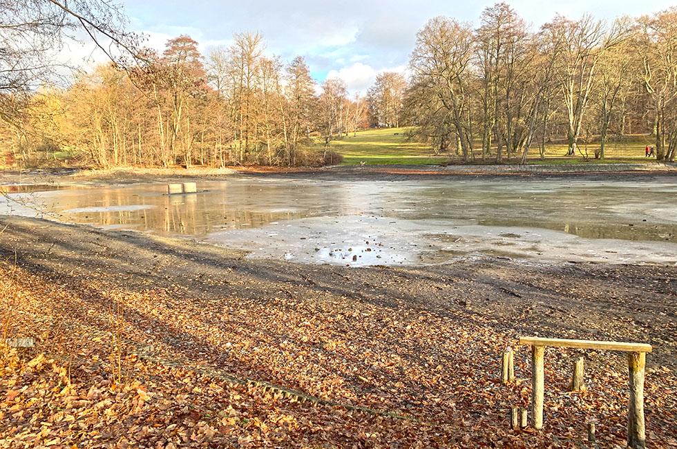Stadtpark-Teich-Entschlammung-Plauen-Vogtland-Gartendenkmal