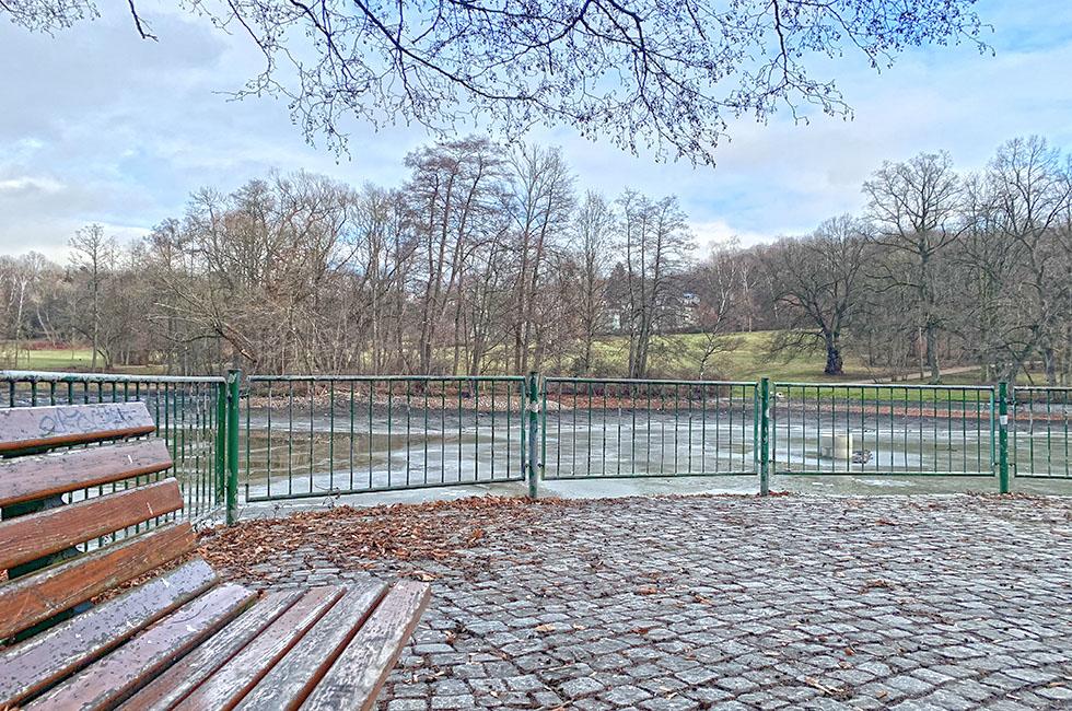 Stadtpark-Teich-Parkbank-Aussichtsplattform-Entschlammung-Plauen-Vogtland-Gartendenkmal