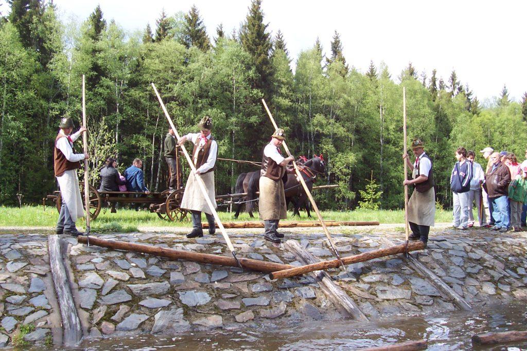 Flößerei als Immaterielles Kulturerbe der Menschheit vorgeschlagen. Foto: Vogtländischer Flößerverein Muldenberg 3