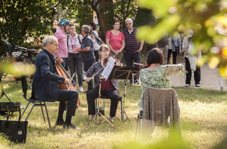 Musikalischer Spaziergang im Plauener Stadtpark